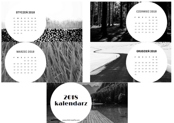 https://www.dropbox.com/s/8clleaomwgavbo8/kalendarz%202018%20%281%29.pdf?dl=0